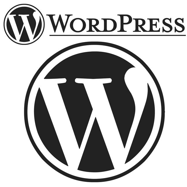 Website mit Wordpress Bericht über CMS Systeme